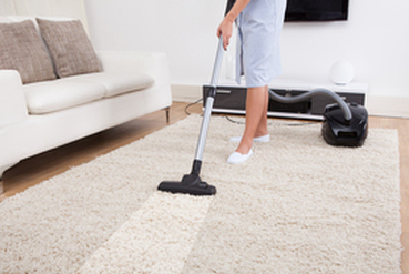 carpet cleaners west auckland